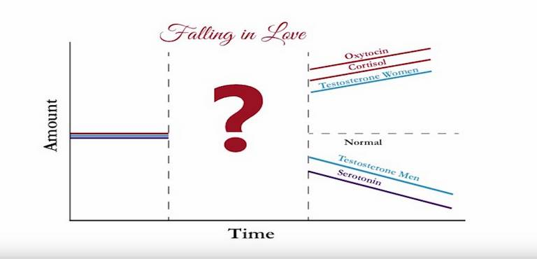 Falling in Love Graph